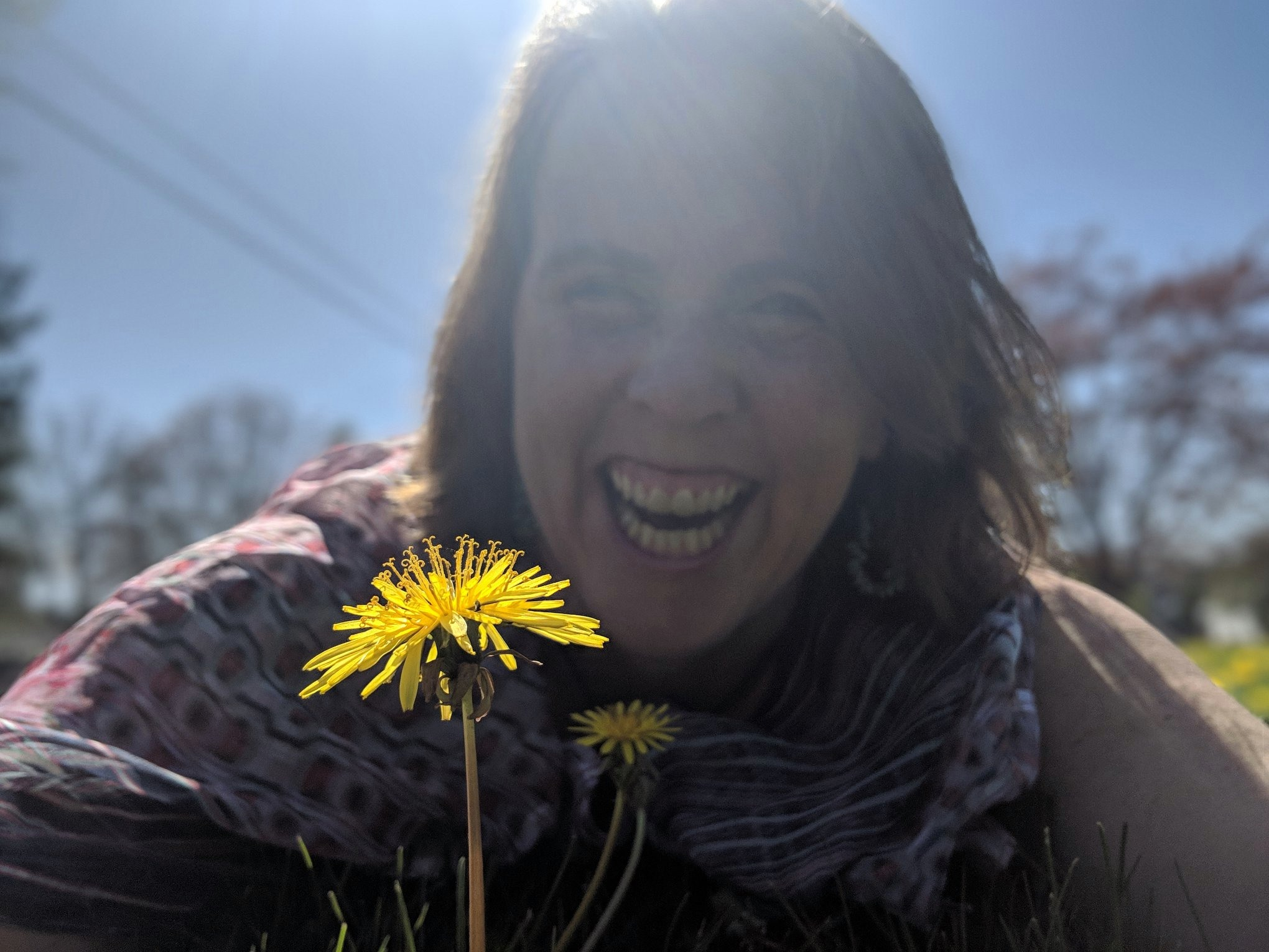 Stacey Greene Dandelion People